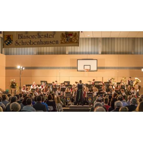 Sing- und Musikschule Schrobenhausen