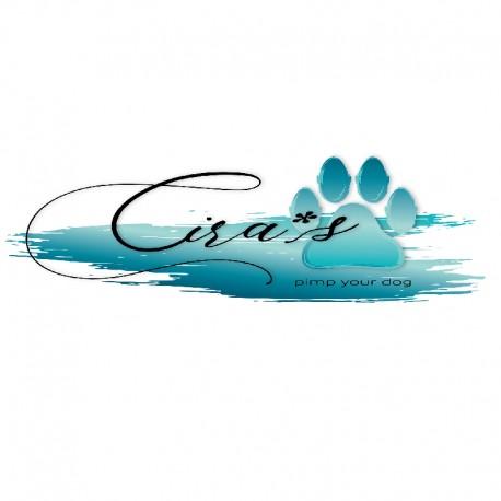 Cira's pimp your dog